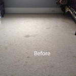 Cranberry Juice Stain Removal San Carlos-A
