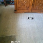 Dirt Stains Removal San Carlos