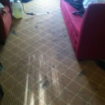 San Carlos-Carpet-Clean-before