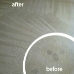 San Carlos-Wine-Stain-Carpet-Cleaning