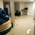 San Carlosbasement-flood-damage-repair