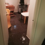 San Carlosoffice-room-flood-damage-repair
