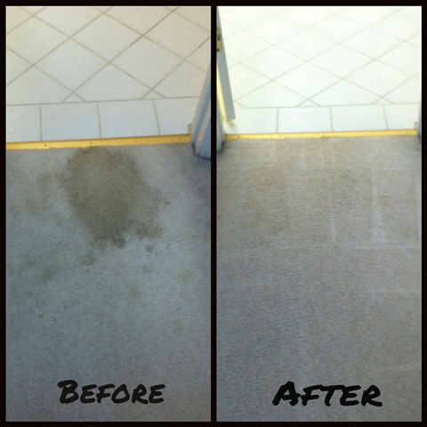 Carpet Clean job before and after example San Carlos California