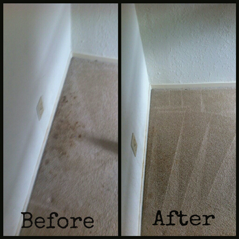 Wall 2 Wall Carpet Cleaning before and after San Carlos